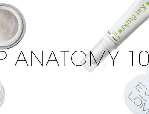 Lip Anatomy 101